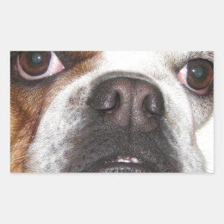 Daisy Rectangle Sticker