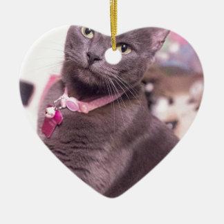 Daisy the Cat Ceramic Heart Decoration