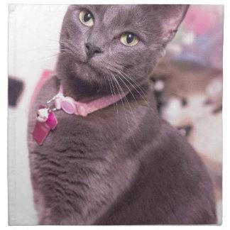 Daisy the Cat Napkin