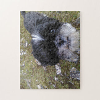 Daisy the shih tzu puzzle for doggy lovers!!!
