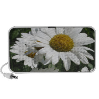 Daisy Travelling Speakers