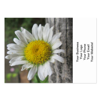 Daisy Weathered Flower Business Card Template