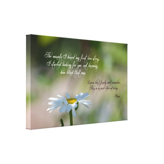 Daisy with Quote Stretched Canvas Print