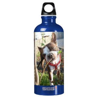 Daisy Yummy... SIGG Traveller 0.6L Water Bottle