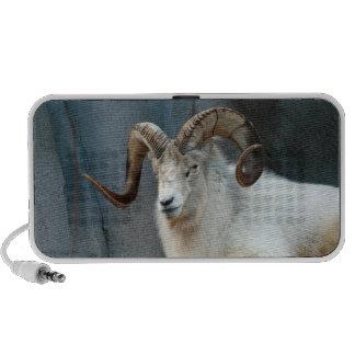 Dall Sheep Doodle Speaker
