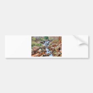 Dallas Arboretum and Botanical Garden Bumper Sticker