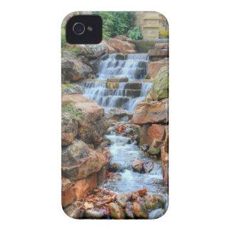 Dallas Arboretum and Botanical Garden iPhone 4 Cases