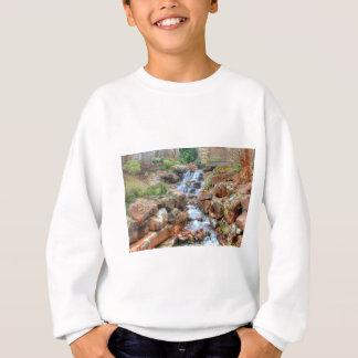 Dallas Arboretum and Botanical Garden Sweatshirt