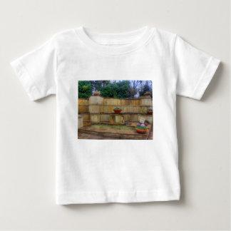 Dallas Arboretum and Botanical Gardens Entrance Baby T-Shirt