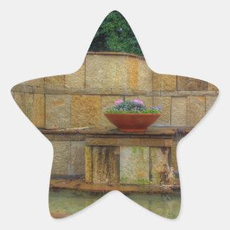 Dallas Arboretum and Botanical Gardens Entrance Star Sticker
