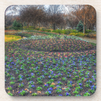 Dallas Arboretum and Botanical Gardens flower bed Coaster