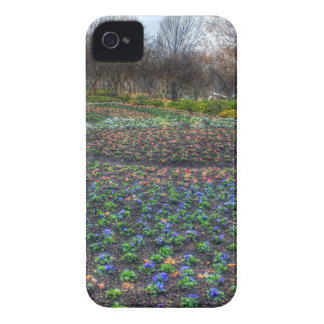Dallas Arboretum and Botanical Gardens flower bed iPhone 4 Case-Mate Case