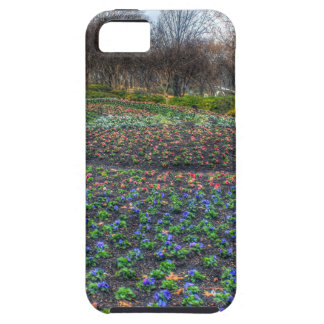 Dallas Arboretum and Botanical Gardens flower bed iPhone 5 Cases
