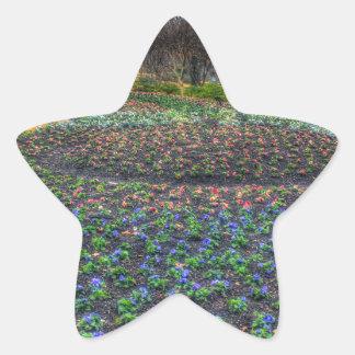 Dallas Arboretum and Botanical Gardens flower bed Star Sticker