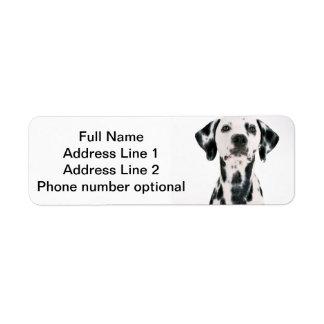 Dalmatian Address sticker Return Address Label
