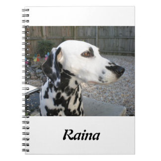 Dalmatian - Cindy's Reina Notebook