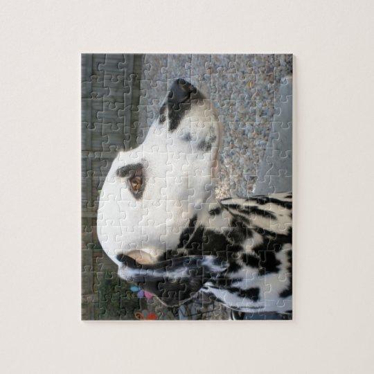 Dalmatian - Cindy's Reina Puzzle