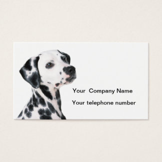 Dalmatian dog beautiful photo custom business card
