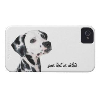 Dalmatian dog beautiful photo, gift iPhone 4 covers