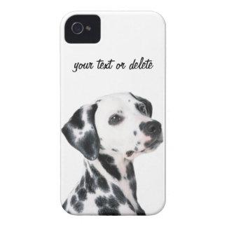 Dalmatian dog beautiful photo, gift iPhone 4 case