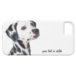 Dalmatian dog beautiful photo, gift iPhone 5 cover