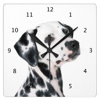 Dalmatian dog beautiful photo wallclock