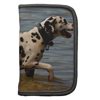 Dalmatian Dog Organizers