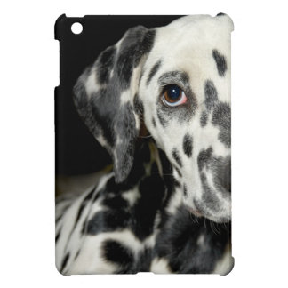 Dalmatian dog, pretty lookking cover for the iPad mini