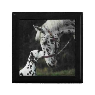 Dalmatian & Her Horse Gift Box