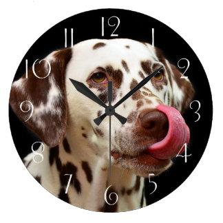 Dalmatian licking large clock