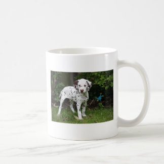 Dalmatian puppy dog mug, present idea coffee mug