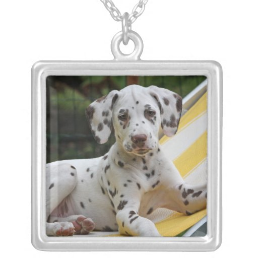 Dalmatian puppy dog necklace, gift idea