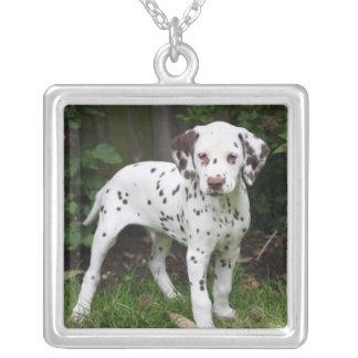 Dalmatian puppy dog necklace, present idea square pendant necklace