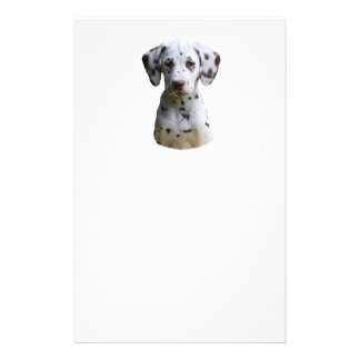 Dalmatian puppy dog photo flyer