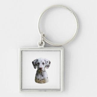 Dalmatian puppy dog photo key chain