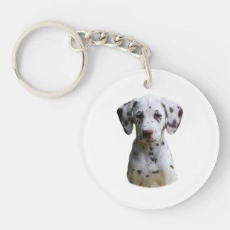 Dalmatian puppy dog photo acrylic key chains