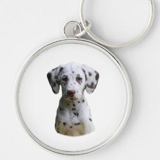 Dalmatian puppy dog photo keychain