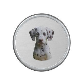 Dalmatian puppy dog photo bluetooth speaker