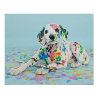 Dalmatian Puppy Poster