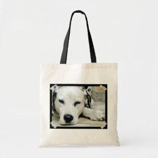 Dalmatian Resting  Small Tote Bag