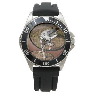 Dalmatian_Window_Art_Mens_Black_Rubber_Watch Watches