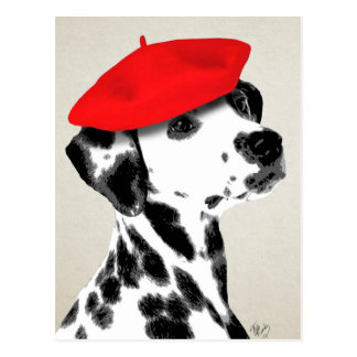 Dalmatian With Red Beret Postcard