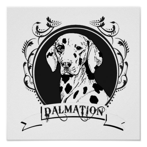 DALMATION (2) PRINT