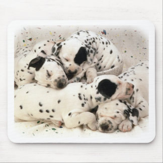 Dalmation Puppies Mouse Pad
