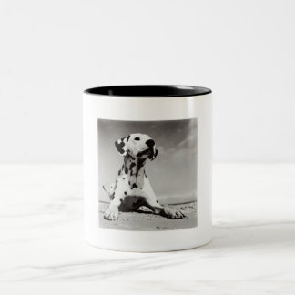 Dalmation Puppy Two-Tone Coffee Mug