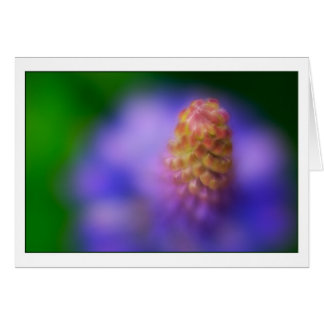 Dance of the Lupine Card