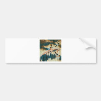 DANCER AND DRAGONFLIES 14 BUMPER STICKER