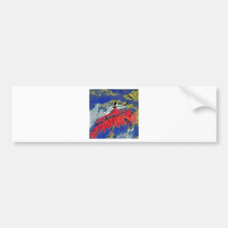 DANCER AND DRAGONFLIES 28 BUMPER STICKER