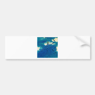 DANCER AND DRAGONFLIES 32 BUMPER STICKER
