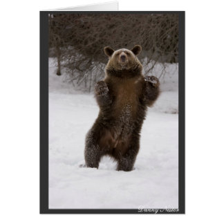 Dancing Bear Card